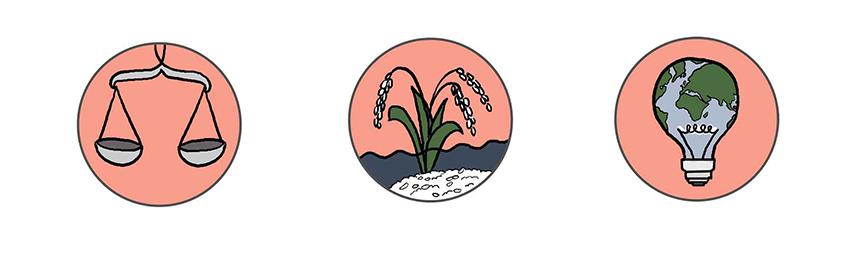 piktogramme rice equality world bulb