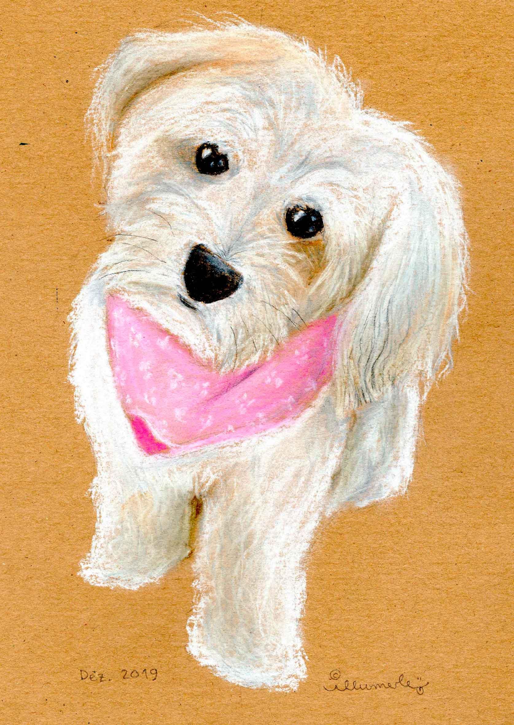 hund-porträt-pastell
