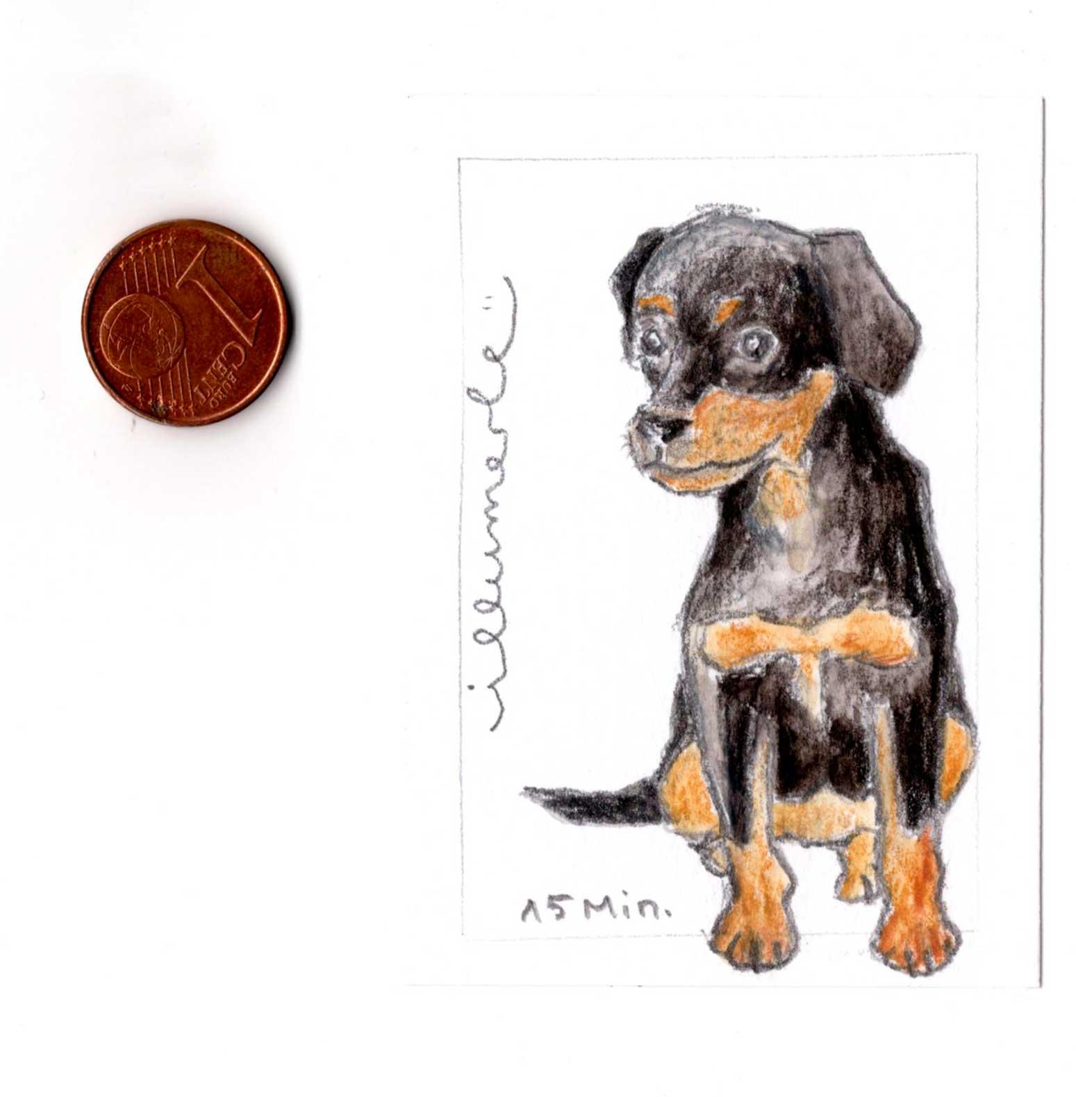 Hundeporträt miniporträt